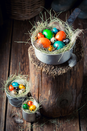 Fresh and colorful eggs for Easter on hay Stock Photo