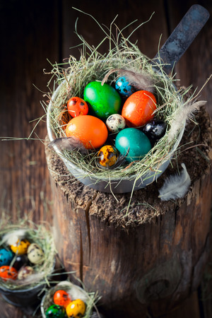 Fresh colorful Easter eggs in the nest with hay Stock Photo