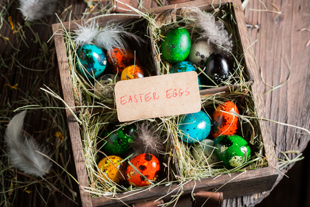 Colorful Easter eggs with hay and feathers on wooden box