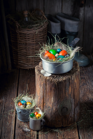 Colourfull eggs for Easter in nest with feathers and hay