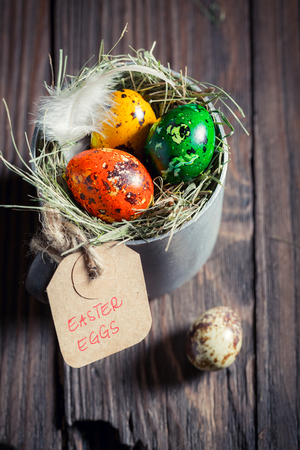 Fresh eggs for Easter in the rustic mug