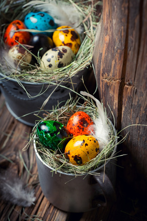 Colourfull eggs for Easter on hay on wooden background Stock Photo