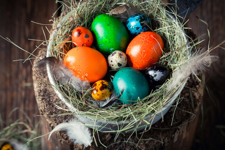 Closeup of colorful Easter eggs with hay and feathers Stock Photo