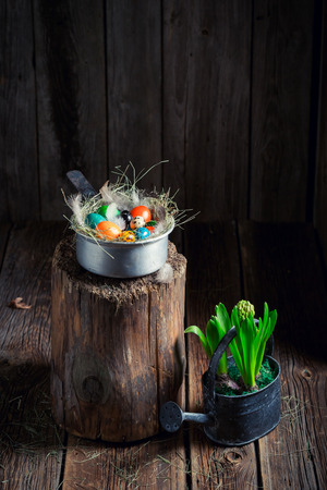 Fresh Easter eggs with hay and feathers in wooden cottage Stock Photo