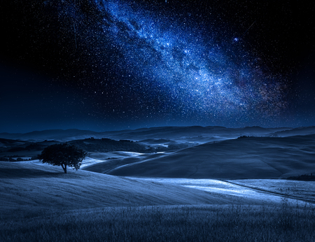 Tree on field in summer at night with milky way Banco de Imagens