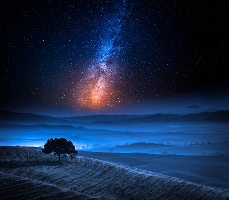 Dreamland in Tuscany with tree on field and milky way Stock Photo