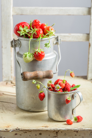 Full of vitamins wild strawberries in the old metal mugs