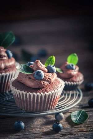 Brown cupcake with fresh blueberries and cream Banco de Imagens