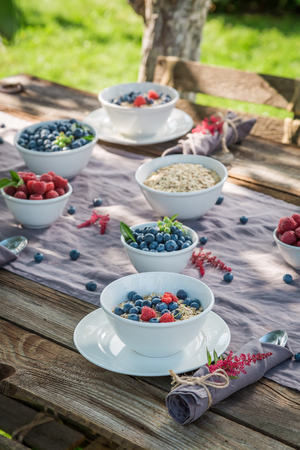 Healthy granola with berry fruits and milk in sunny day Stock Photo