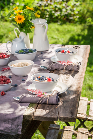 Fresh granola with berries and milk served in the garden