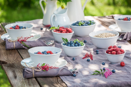 Fresh granola with berry fruits and milk in summer