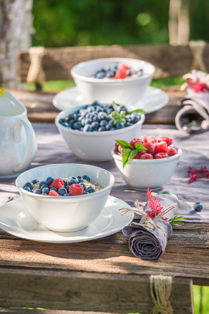 Tasty breakfast with raspberries and blueberries in garden