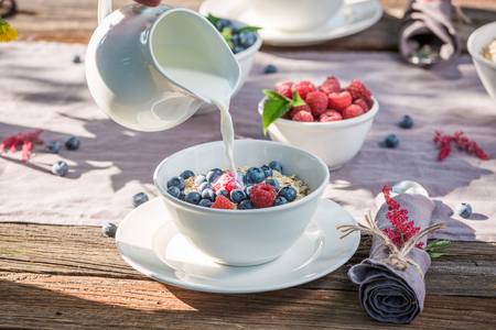 Healthy granola with raspberries and blueberries in summer Stock Photo