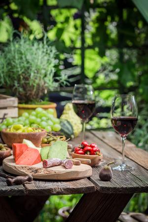 치즈로 저녁 식사 준비, 정원에서 레드 와인 스톡 콘텐츠