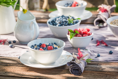Tasty breakfast with berry fruits and milk in summer