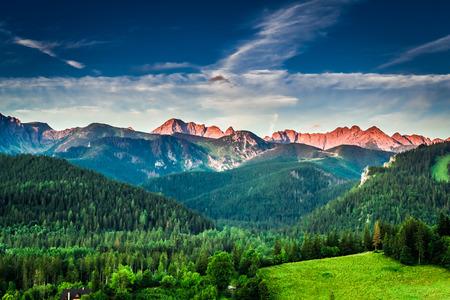 Sunset in mountains in Poland in summer, Europe Zdjęcie Seryjne