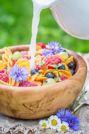 Pouring milk into cornflakes with berry fruit in garden Zdjęcie Seryjne