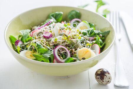 Primo piano di insalata con cipolla, uovo di quaglia e germogli Archivio Fotografico - 96118541