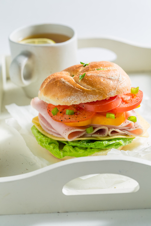 Delicious sandwich with ham, cheese and tomatoes Stock Photo