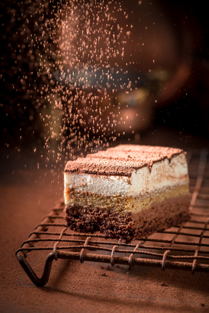Sweet tiramisu cake with cocoa, mascarpone and biscuits