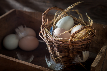 Ecological eggs in the basket with feathers