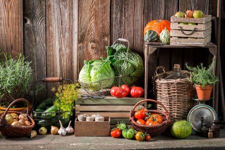 Jardín con frutas y verduras cosechadas en otoño
