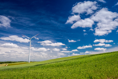Ecological wind turbines as alternative energy on green field