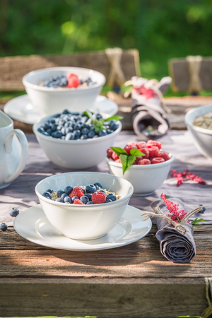 Closeup of breakfast with berry fruits and milk in garden Stock Photo