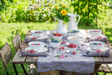 Granola with raspberries and blueberries in sunny garden