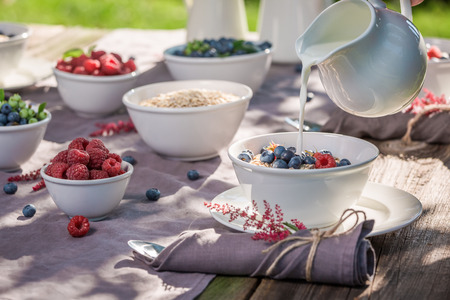 Healthy breakfast with oat flakes and berries in sunny day