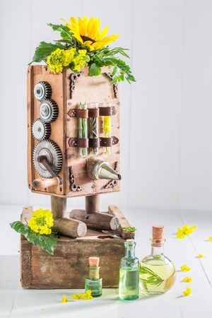 Vintage wooden machine to make oil from seeds 写真素材