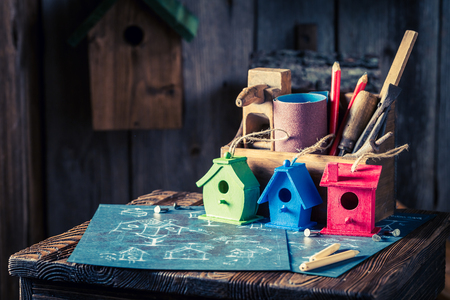 Project of small bird house and blue construction plan