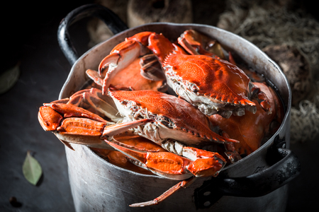 Ingredients for homemade crab with spices in metal pot