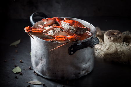 Tasty and fresh crab with allspice and bay leaf