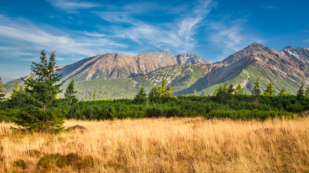 Blue and yellow view in the Tatra Mountains in autumn