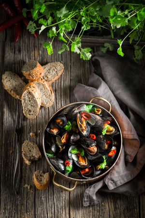 Top view of mussels with coriander and chili peppers Reklamní fotografie