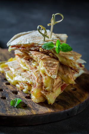Tasty tortilla as quesadilla with cheese, sauce and herbs Stok Fotoğraf