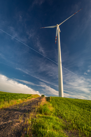 Wind turbines on green field and blue sky in countryside