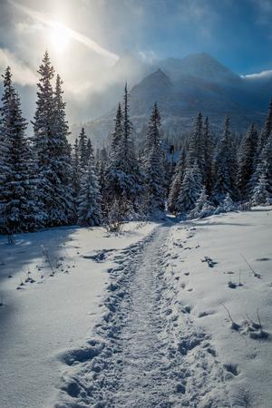 Enjoy your winter journey to Tatras Mountains, Poland