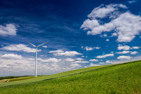 Ecological wind turbines on green field in summer