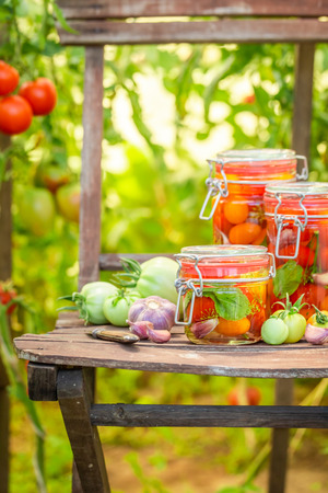 Natural pickled tomatoes in small summer greenhouse