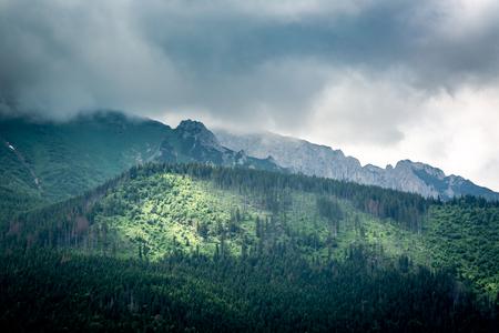 Illuminated green valley and Cloudy Tatra Mountains, Slovakia 스톡 콘텐츠