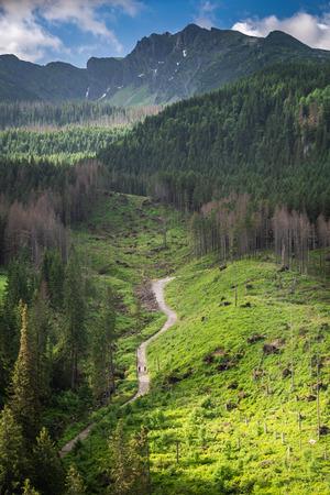 Adembenemend pad naar Kasprowy Wierch in de Tatra-berg, Polen
