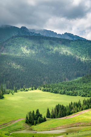 Green valley and cloudy Tatra Mountains, Slovakia
