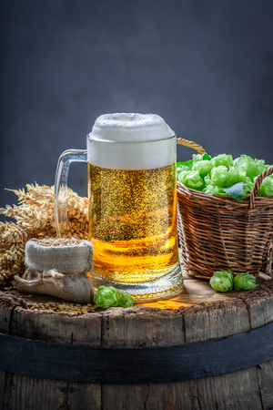 Fresh light beer with foam, hops and wheat Stock fotó