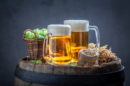 Two cold pints of beer with foam, wheat and hops