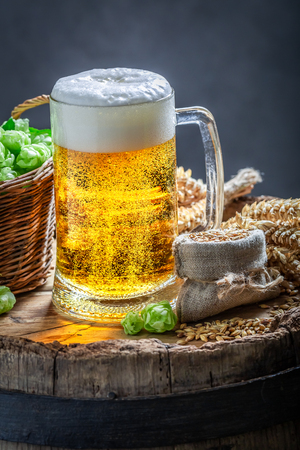 Fresh pint of beer with foam, wheat and hops