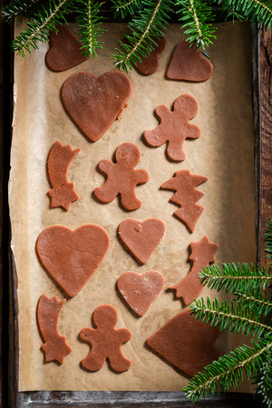 Before baking gingerbread cookies for Christmas on baking paper