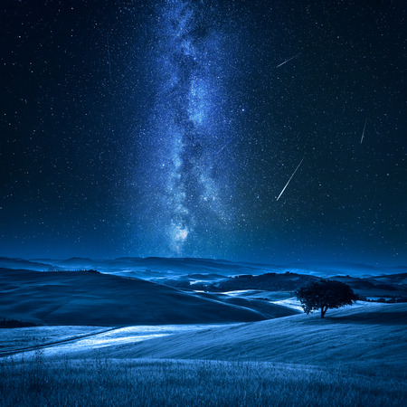Tree on field with milky way and falling stars