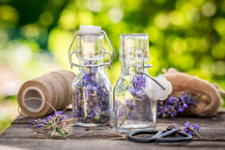 Violet and aromatic lavender in small bottles Imagens